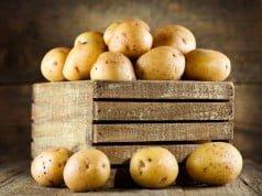 Casca de batatas - fonte de nutrientes
