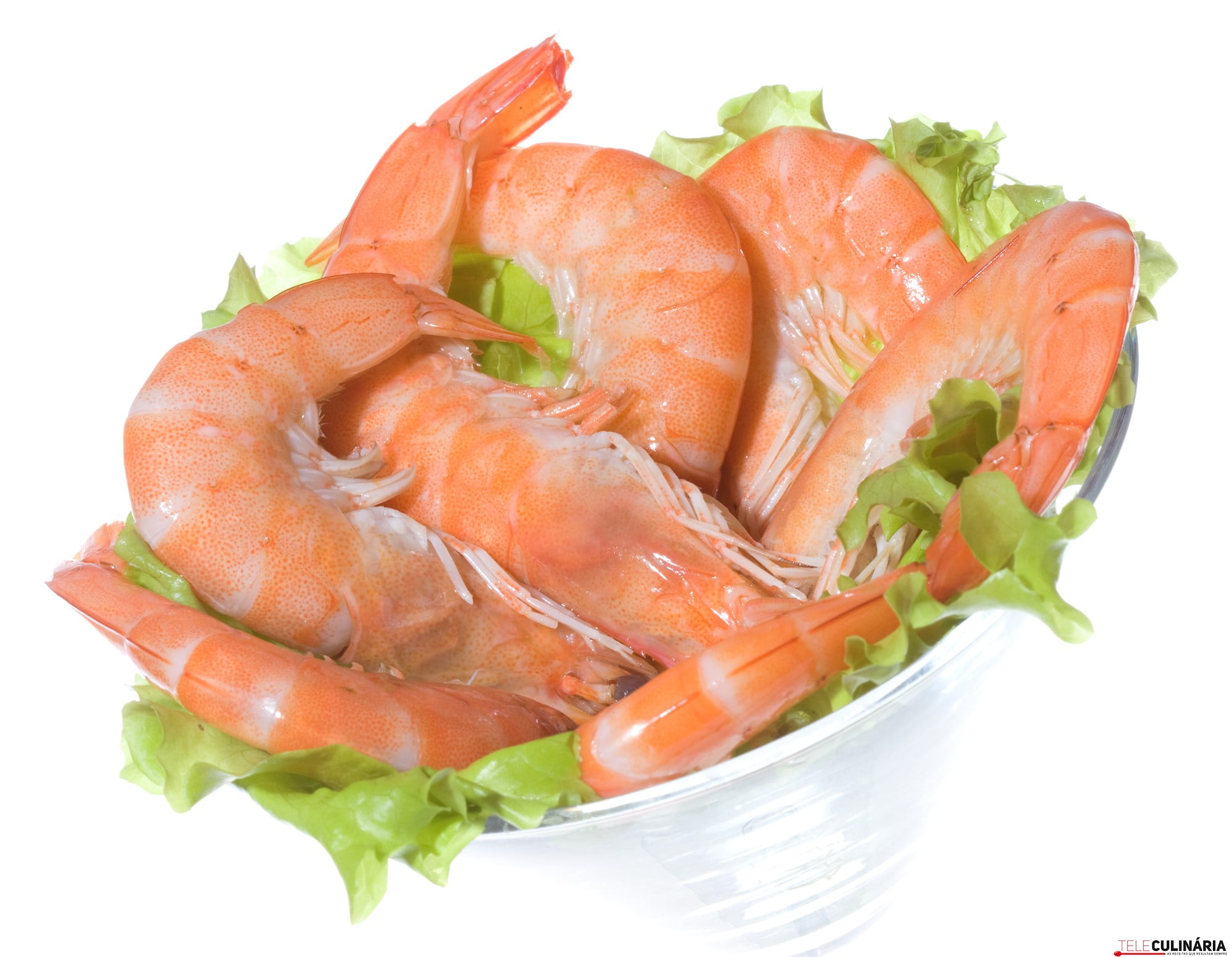 Cocktail with shrimps on white background