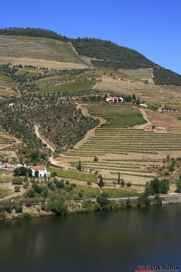 Portugal, Douro Region, River Douro and vineyards