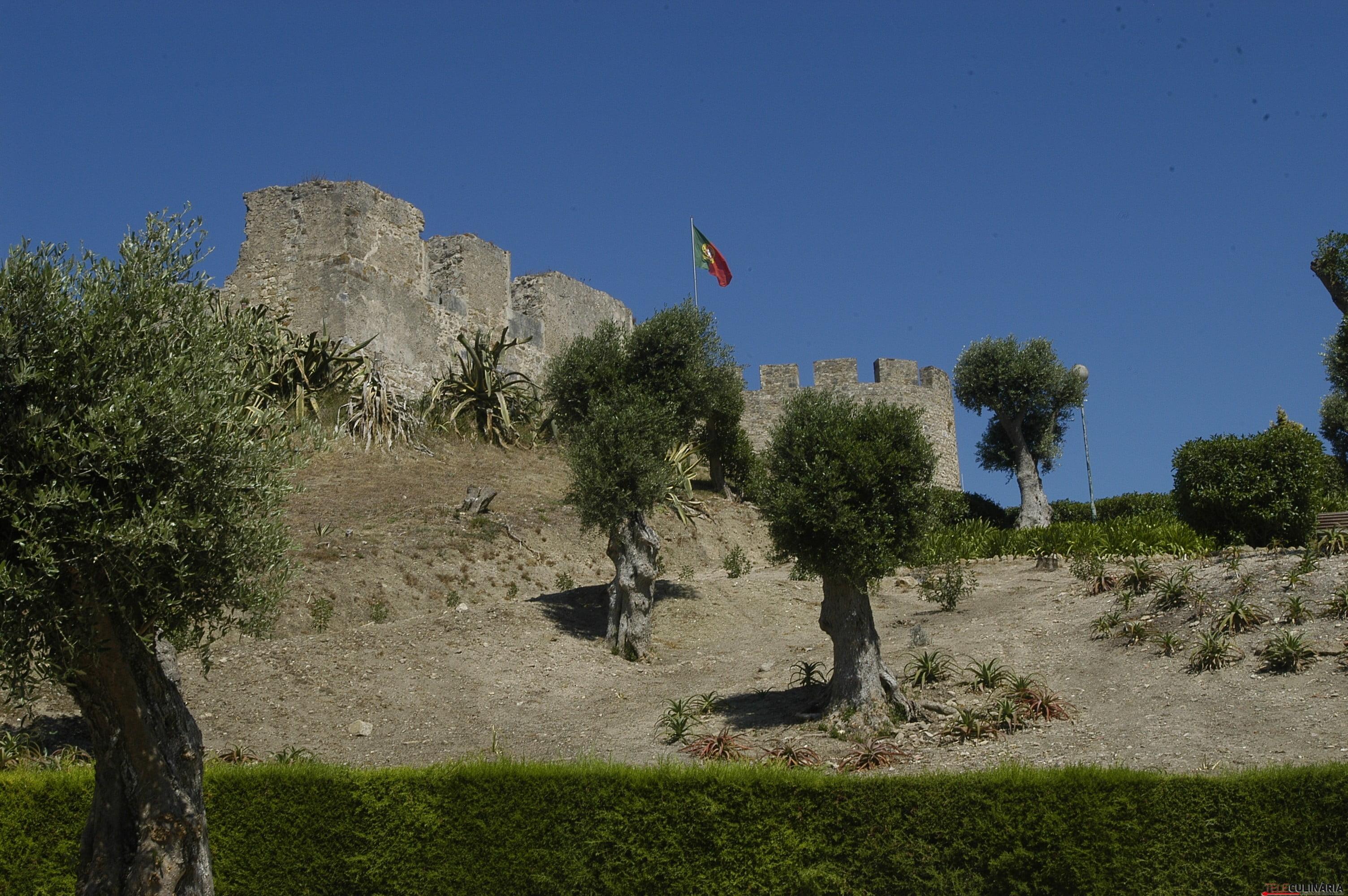 Igreja e Castelo de Torres Vedras (1)