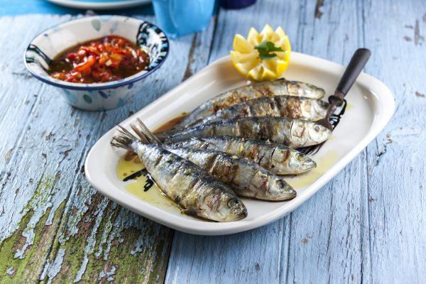 Resultado de imagem para sardinha
