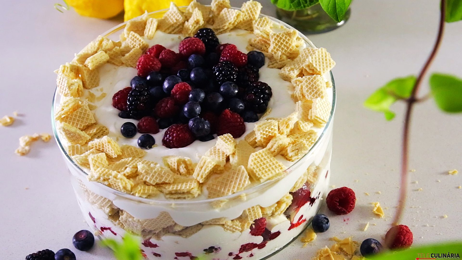 0292 Trifle limao frutos bosque CHPS