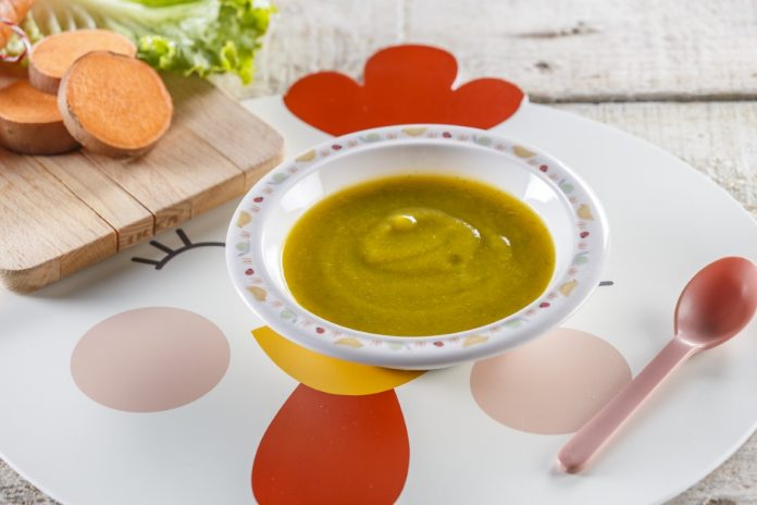 Pure de curgete com alface CHPF 6 Medium