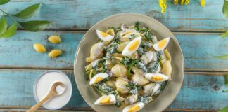 Salada de massa com espinafres CHPF 14 Large